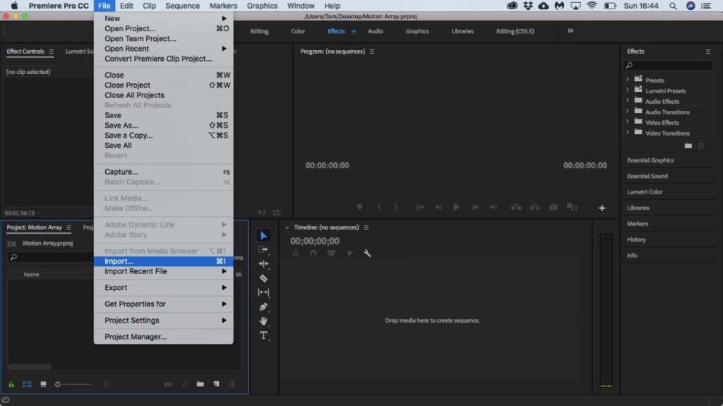 Import into Premiere Pro